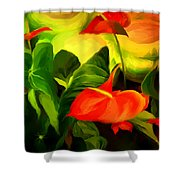 Green Red Shower Curtain