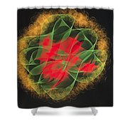 Green Red Gold Abstract Shower Curtain