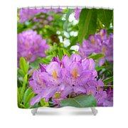 Green Rhododendron Floral Garden Pink Purple Art Prints Shower Curtain