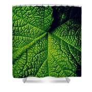 Green Ribbons Of Life Shower Curtain