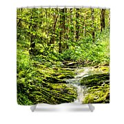 Green River No2 Shower Curtain