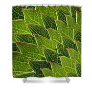 Green Scales Of A Dragon Shower Curtain