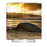 Green Sea Turtle At Sunset V2 Shower Curtain