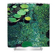 Green Shimmering Pond Shower Curtain