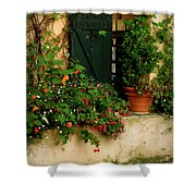 Green Shuttered Window Shower Curtain by Lainie Wrightson