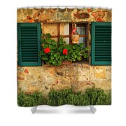 Green Shutters And Window In Chianti Shower Curtain