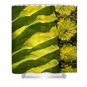 Green Silk 02 Shower Curtain