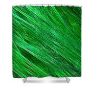 Green Streaming Shower Curtain