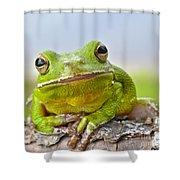 Green Treefrog Shower Curtain