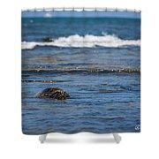 Green Turtle Surf Shower Curtain