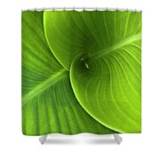 Green Twin Leaves Shower Curtain