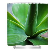 Green Twist Shower Curtain