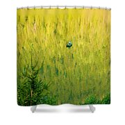 Green Vertigo Shower Curtain