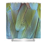 Green-winged Macaw Shower Curtain