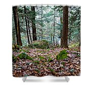 Green Woodland Beauty Shower Curtain