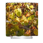 Green Yellow And Dry Leaves Shower Curtain