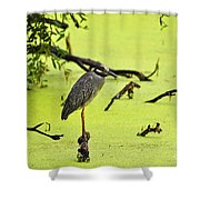 Green Yellow And Red Shower Curtain