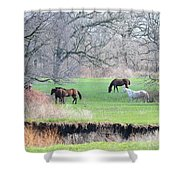 Greener Pastures Shower Curtain