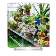 Greenhouse With Cactus Shower Curtain