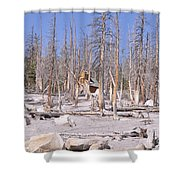Lonely Cabin Shower Curtain