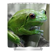 Greeny 5 Shower Curtain