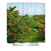 Gregory Bald Shower Curtain