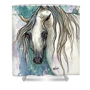 Grey Arabian Horse 2013 11 26 Shower Curtain
