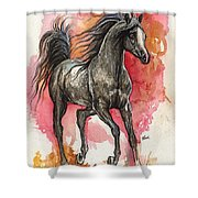 Grey Arabian Horse 2014 01 12 Shower Curtain