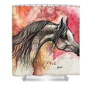 Grey Arabian Horse On Red Background 2013 11 17  Shower Curtain