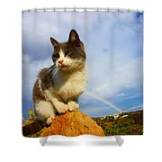 Grey Cat And Rainbow Shower Curtain