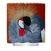 Grey Crowned Crane Shower Curtain