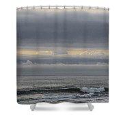 Grey Day Shower Curtain