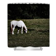 Grey In The Pasture Shower Curtain