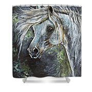 Grey Pony With Long Mane Oil Painting Shower Curtain