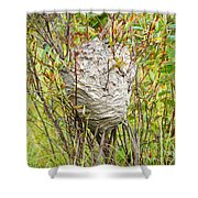 Grey Wasps Nest In Willow Bush Shower Curtain