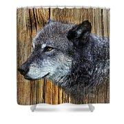 Grey Wolf On Wood Shower Curtain