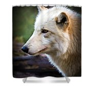 Grey Wolf Painting Shower Curtain