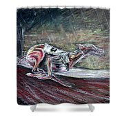 Greyhound Number Three Shower Curtain