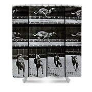 Greyhound Running Shower Curtain