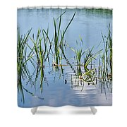 Greylake Reflections Shower Curtain
