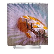 Grid Above Flowers Shower Curtain