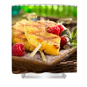 Grilled Pineapple  Shower Curtain