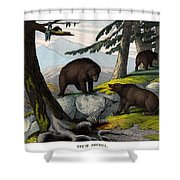 Grisly Bear Shower Curtain