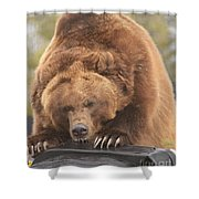 Grizly Lunch Shower Curtain