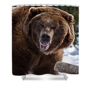 Grizzley Encounter Shower Curtain