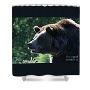 Grizzly-7755 Shower Curtain