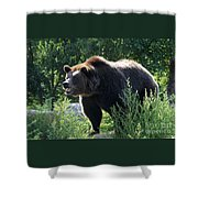 Grizzly-7756 Shower Curtain