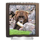Grizzly Bear 01 Shower Curtain