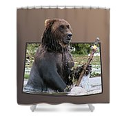 Grizzly Bear 6 Out Of Bounds Shower Curtain