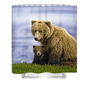 Grizzly Bear And Cub Shower Curtain